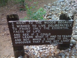 Thoreau had a  way of Putting his Words