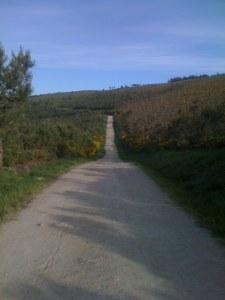 Nice Road...