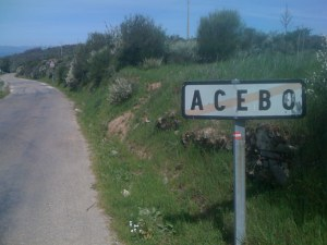 Out of Acebo
